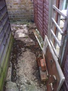 Pegs garden 2013 001