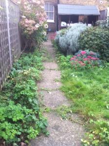Pegs garden 2013 003