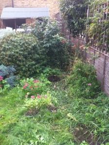 Pegs garden 2013 005