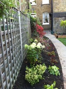 Pegs garden 2013 015
