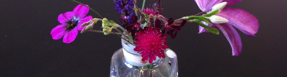 In A Vase On Monday A Hint At What Is Out There Digwithdorris