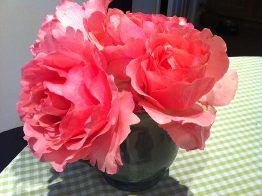 in a vase sep14 005