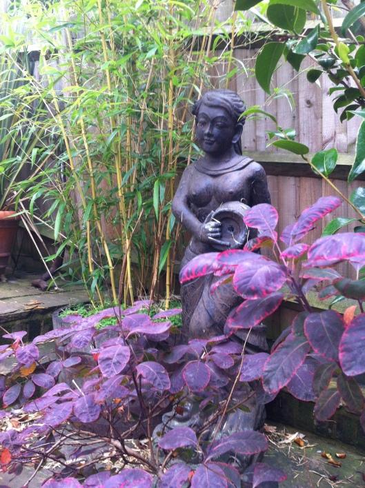 caz garden 14 004