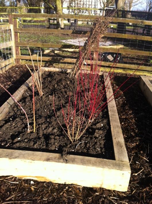 garden plans 15 002