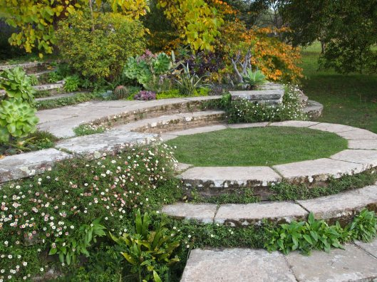 Circular steps with succulents and erigeron